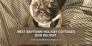 Meet Baytown Holiday Cottages New Recruit