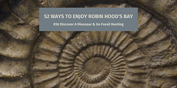 52 Ways to Enjoy Robin Hood's Bay: #26 Discover A Dinosaur & Go Fossil Hunting