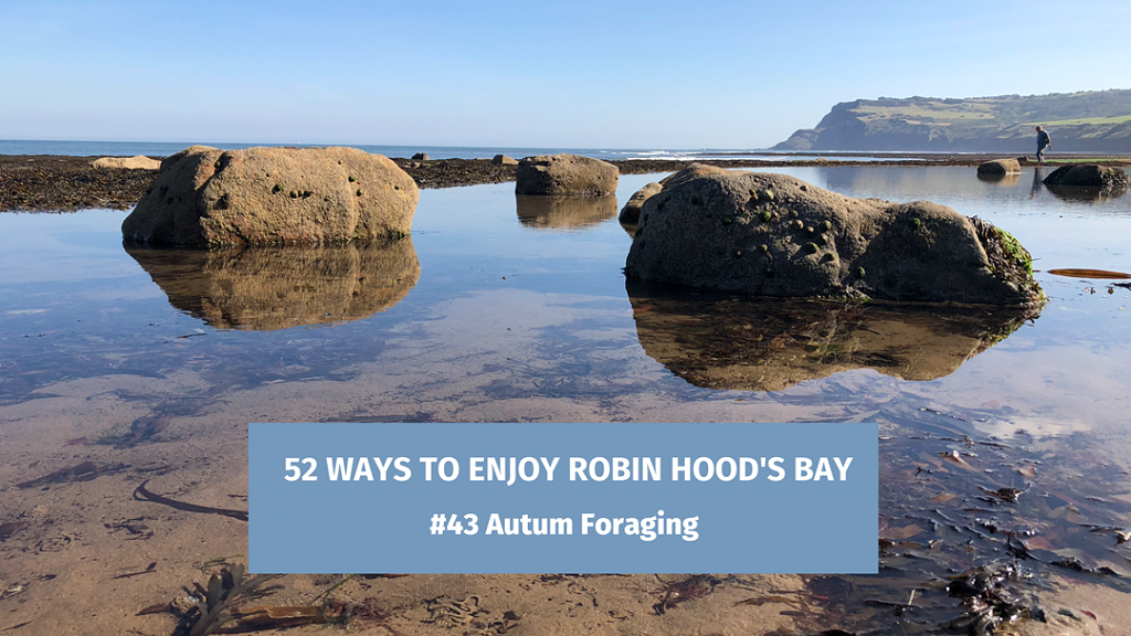 52 Ways To Enjoy Robin Hood's Bay: #43 Autumn Foraging